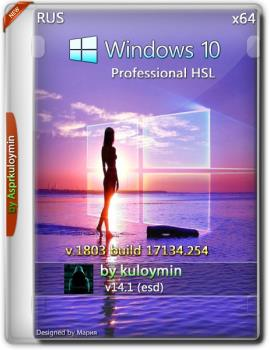 Windows 10 HSL/Pro 1803 x64 by kuloymin v14.1 (esd)