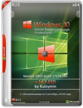 Windows 10 HSL/Pro 1803 x64 by kuloymin v14.3 (esd)