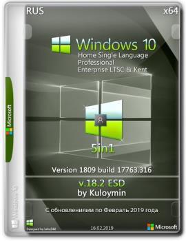 Windows 10 (v1809) 5in1 by kuloymin v18.2 x64bit
