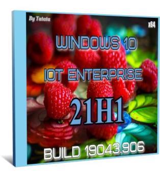 Windows 10 Iot Enterprise 19042.906 x64 by Tatata