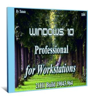 Windows 10 Pro for Workstations 19043.964 x64